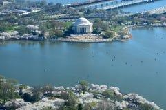 δ Άνθη κερασιών Γ και μνημείο του Jefferson στοκ εικόνες
