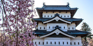 Άνθη κερασιών στο πάρκο Hirosaki Castle Στοκ Φωτογραφίες