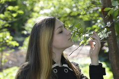 Άνθη κοριτσιών και κερασιών Στοκ Φωτογραφίες