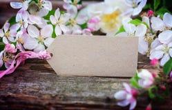 Άνθη της Apple και σημάδι χαρτονιού Στοκ Φωτογραφίες