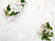 Άνθη της Apple με την κάρτα Στοκ Φωτογραφίες