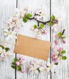 Άνθη της Apple με την κάρτα Στοκ φωτογραφία με δικαίωμα ελεύθερης χρήσης
