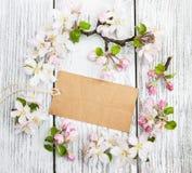 Άνθη της Apple με την κάρτα Στοκ Εικόνα