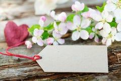 Άνθη της Apple, σημάδι χαρτονιού Στοκ φωτογραφία με δικαίωμα ελεύθερης χρήσης