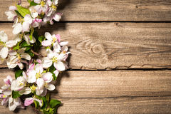 Άνθη της Apple στην ξύλινη επιφάνεια Στοκ Εικόνα