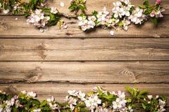 Άνθη της Apple στην ξύλινη επιφάνεια Στοκ Φωτογραφία