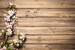 Άνθη της Apple στην ξύλινη επιφάνεια Στοκ Εικόνες