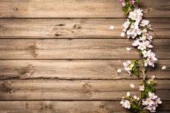 Άνθη της Apple στην ξύλινη επιφάνεια Στοκ φωτογραφία με δικαίωμα ελεύθερης χρήσης