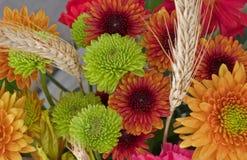 άνθη φθινοπώρου Στοκ φωτογραφία με δικαίωμα ελεύθερης χρήσης