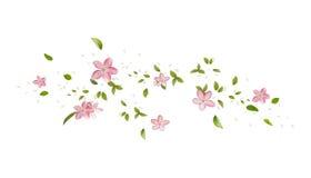 Άνθη Apple-δέντρων άνοιξη, ενιαία λουλούδια και πέταλα Στοκ Φωτογραφία