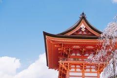 Άνθη Sakura κερασιών που ανθίζουν μπροστά από την παραδοσιακή κόκκινη και μαύρη ιαπωνική λάρνακα στοκ εικόνες με δικαίωμα ελεύθερης χρήσης