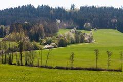 Άνθιση δέντρων της Apple στη νότια Γερμανία Στοκ εικόνες με δικαίωμα ελεύθερης χρήσης