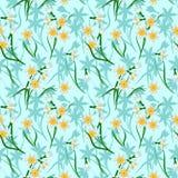 Άνθιση daffodils στο μπλε υπόβαθρο άνευ ραφής Στοκ φωτογραφίες με δικαίωμα ελεύθερης χρήσης