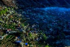 Άνθος αχλαδιών στη Jin chuan 2 Στοκ φωτογραφία με δικαίωμα ελεύθερης χρήσης