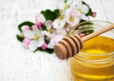 Άνθος και μέλι της Apple Στοκ Εικόνα