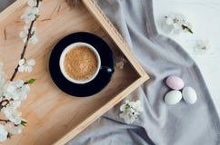 Άνθος καφέ και κερασιών Στοκ Φωτογραφίες