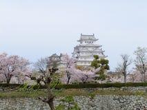 άνθος κερασιών του Himeji Castle Στοκ Φωτογραφία
