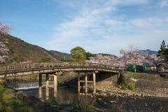 Άνθος κερασιών, Arashiyama την άνοιξη, Κιότο, Ιαπωνία Στοκ Φωτογραφία
