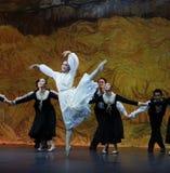 Άνθος-μπαλέτο το κορίτσι από Arles Στοκ Φωτογραφίες