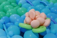 Άνθος μπαλονιών Στοκ φωτογραφίες με δικαίωμα ελεύθερης χρήσης