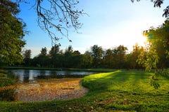 Άνθος στον κήπο Στοκ φωτογραφία με δικαίωμα ελεύθερης χρήσης