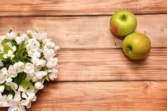 Άνθος της Apple και Apple Στοκ εικόνα με δικαίωμα ελεύθερης χρήσης