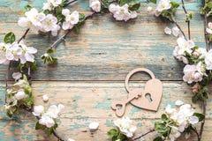 Άνθος της Apple με τη διακοσμητική κλειδαριά καρδιών και κλειδί στο ξύλινο backg Στοκ Εικόνες