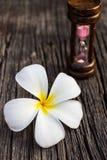 Άνθος Plumeria ή frangipanni στο παλαιό ξύλινο υπόβαθρο Στοκ Φωτογραφίες