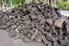 Άνθρακας για το χειμώνα στοκ εικόνα με δικαίωμα ελεύθερης χρήσης