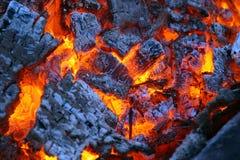 άνθρακας Στοκ Εικόνες