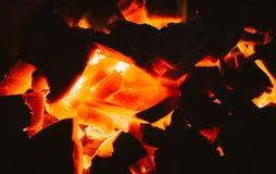 άνθρακες Στοκ Εικόνα