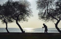 Άνθρωποι και δέντρα, ηλικιωμένη γυναίκα που περπατούν σε έναν κάλαμο Στοκ Εικόνες