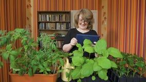 Άνθρωποι, κηπουρική, λουλούδια και έννοια επαγγέλματος - κλείστε επάνω της γυναίκας ή του κηπουρού με τον υπολογιστή PC ταμπλετών απόθεμα βίντεο