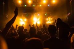 Άνθρωποι που έχουν τη διασκέδαση στη συναυλία στοκ εικόνες