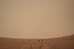 Άνθρωποι που αναρριχούνται κάτω από το μεγάλο αμμόλοφο μπαμπάδων στο αλατισμένο τηγάνι Sossusvlei Στοκ Φωτογραφίες