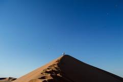 Άνθρωποι που αναρριχούνται στο μεγάλο αμμόλοφο μπαμπάδων, εξετάζοντας τη Σύνοδο Κορυφής και τα πουλιά Στοκ Εικόνες