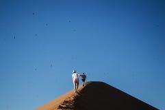 Άνθρωποι που αναρριχούνται στο μεγάλο αμμόλοφο μπαμπάδων, που εξετάζει τη Σύνοδο Κορυφής με τα πουλιά Στοκ φωτογραφία με δικαίωμα ελεύθερης χρήσης