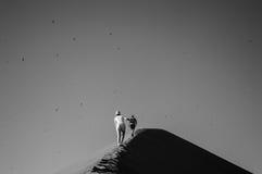 Άνθρωποι που αναρριχούνται στο μεγάλο αμμόλοφο μπαμπάδων, που εξετάζει τη Σύνοδο Κορυφής Στοκ φωτογραφία με δικαίωμα ελεύθερης χρήσης
