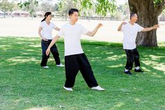 Άνθρωποι που ασκούν ταϊλανδικό chi στο πάρκο Στοκ εικόνα με δικαίωμα ελεύθερης χρήσης