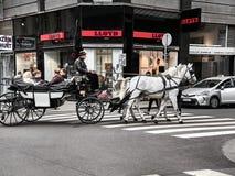 Άνθρωποι που επισκέπτονται τη Βιέννη από μια horse-drawn μεταφορά στοκ φωτογραφία με δικαίωμα ελεύθερης χρήσης