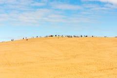 Άνθρωποι που επισκέπτονται τον υψηλότερο αμμόλοφο άμμου Pyla στην Ευρώπη Στοκ εικόνα με δικαίωμα ελεύθερης χρήσης