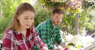 Άνθρωποι που εργάζονται με τα λουλούδια απόθεμα βίντεο
