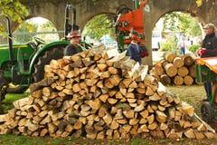 Άνθρωποι που εργάζονται με την ξυλεία Στοκ εικόνες με δικαίωμα ελεύθερης χρήσης