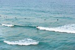 Άνθρωποι που κάνουν σερφ στον ωκεανό στην παραλία Bondi στο Σίδνεϊ, Αυστραλία στοκ εικόνα με δικαίωμα ελεύθερης χρήσης