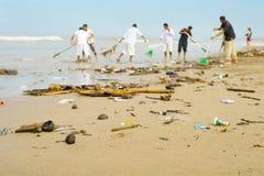 Άνθρωποι που καθαρίζουν τη μολυσμένη παραλία πρεσών Στοκ Εικόνες