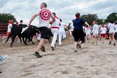 Άνθρωποι που οργανώνονται με τους ταύρους στο μοναδικό γεγονός της Γεωργίας Στοκ Εικόνες