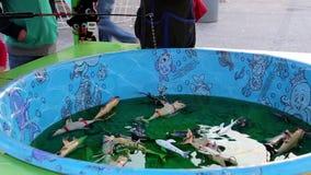 Άνθρωποι που παίζουν το παιχνίδι ψαριών στις διασκεδάσεις καρναβάλι δυτικών ακτών απόθεμα βίντεο
