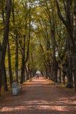 Άνθρωποι που περπατούν κατά μήκος της αλέας στην απόσταση και ενός περίκομψου πάγκου στο πάρκο το φθινόπωρο στοκ φωτογραφία με δικαίωμα ελεύθερης χρήσης