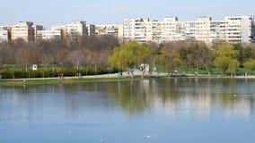 Άνθρωποι που περπατούν στο δημόσιο πάρκο νεολαιών (Parcul Tineretului) στο Βουκουρέστι στις πρώτες ημέρες της άνοιξης απόθεμα βίντεο