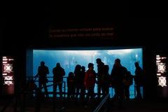 Άνθρωποι που προσέχουν τα ψάρια στη Λισσαβώνα Oceanarium στοκ φωτογραφία με δικαίωμα ελεύθερης χρήσης